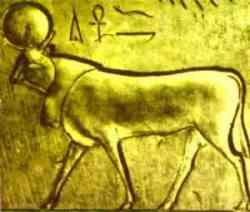 Animali nell'arte Arte egizia - Dio Api