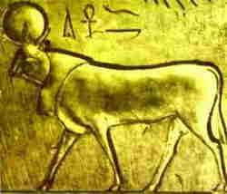 Arte Egizia - Bue Api