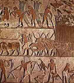 Arte Egizia - Lavori ed animali