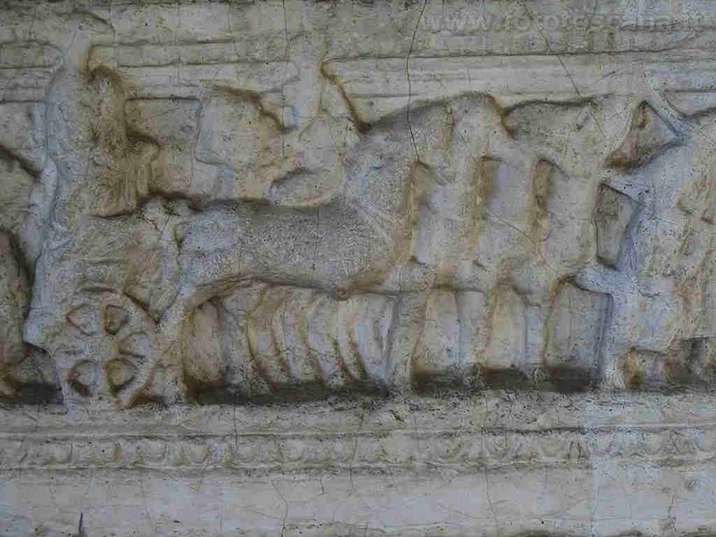 temi arte 036 etruscog