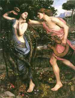 Apollo e Dafne - quadro di Waterhouse