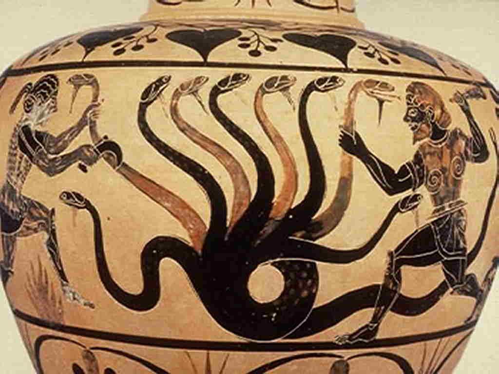Draghi nell'arte Drago Idra