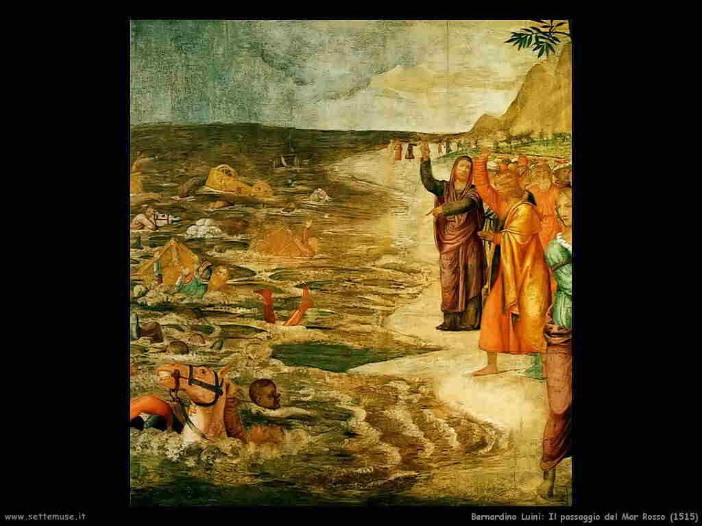 bernardino_luini  1515 passaggio_mar_rosso