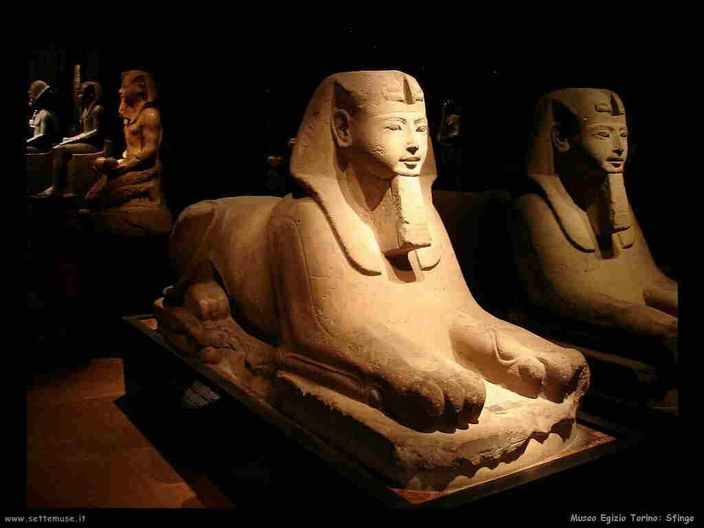 museo_egizio_torino_001_sfinge