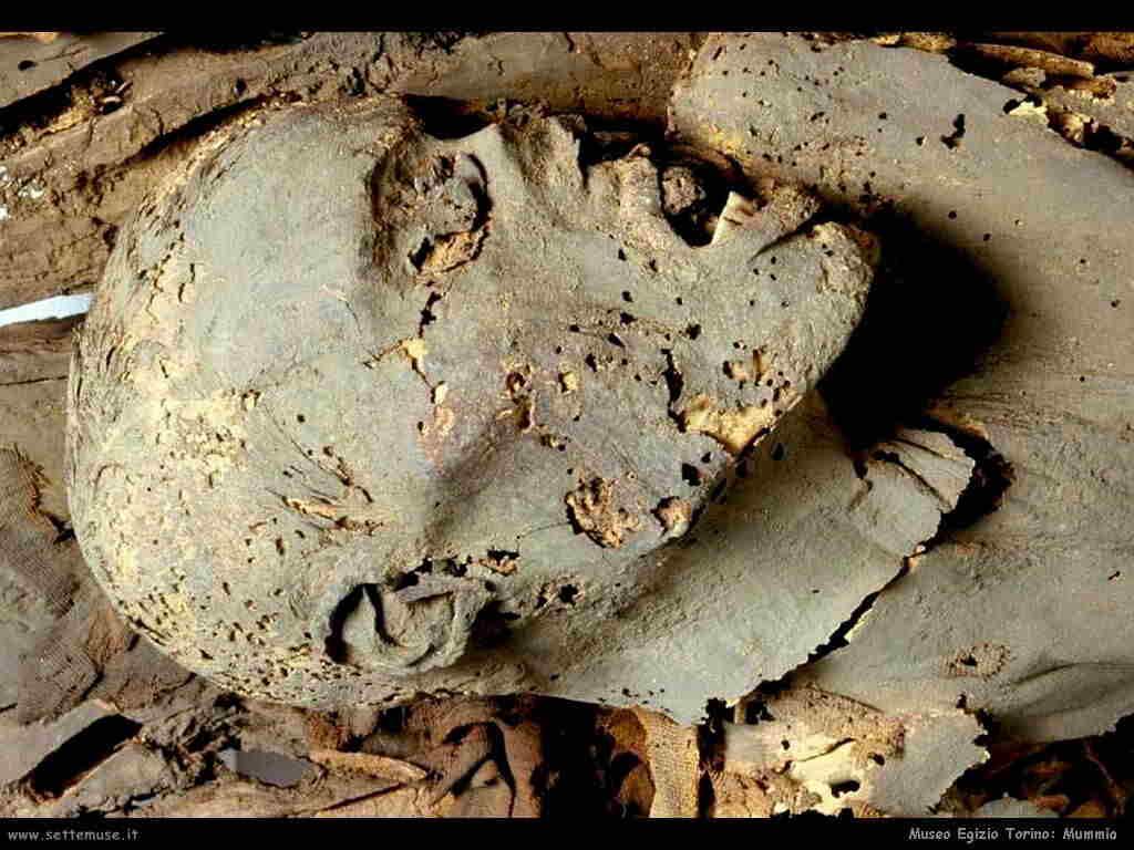museo_egizio_torino_013_mummia