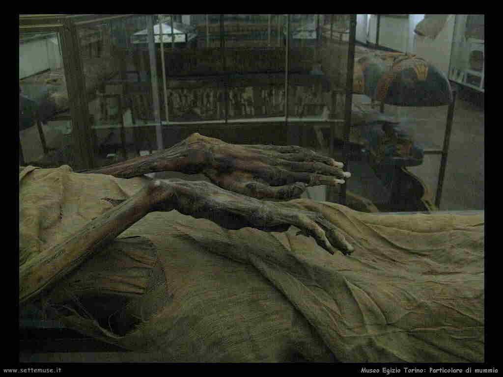 museo_egizio_torino_014_particolare_mummia