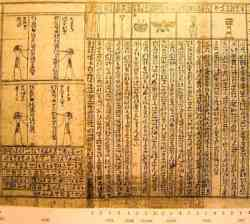 Museo Egizio Torino - Papiro
