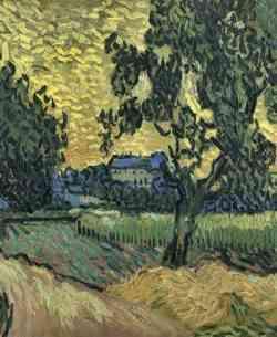 Museo di Van Gogh - 1889