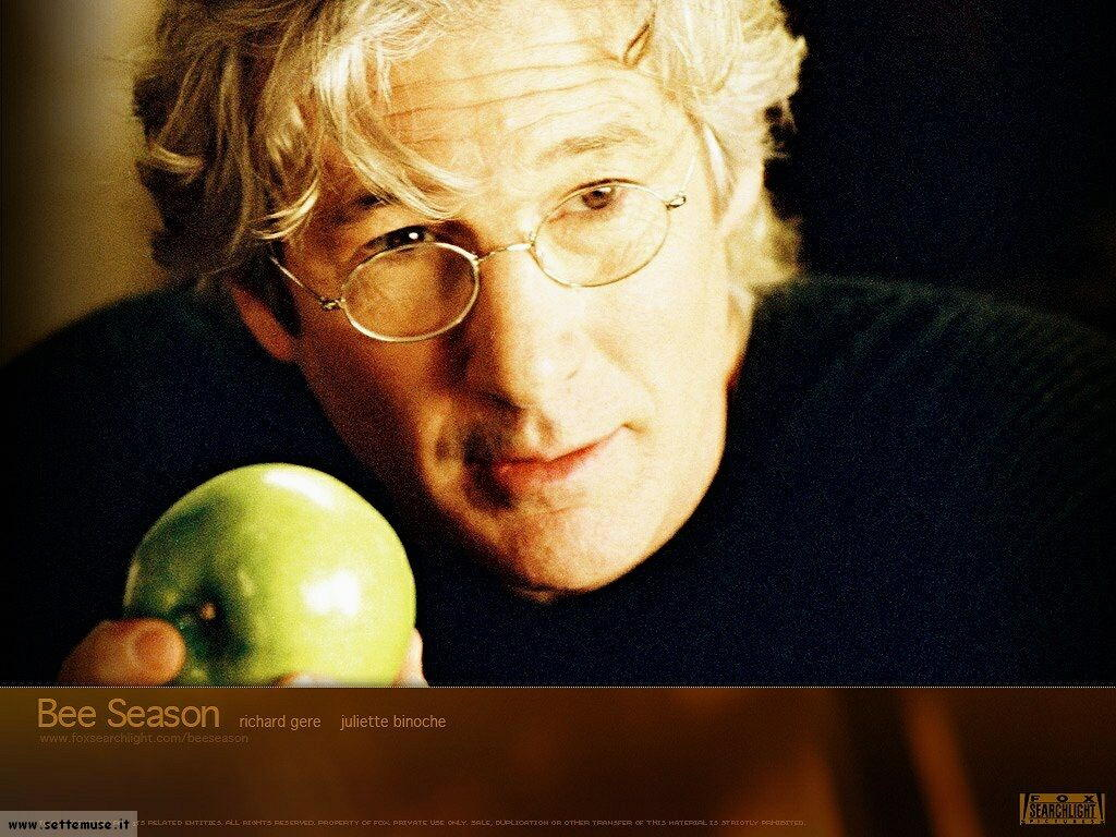 richard gere 11