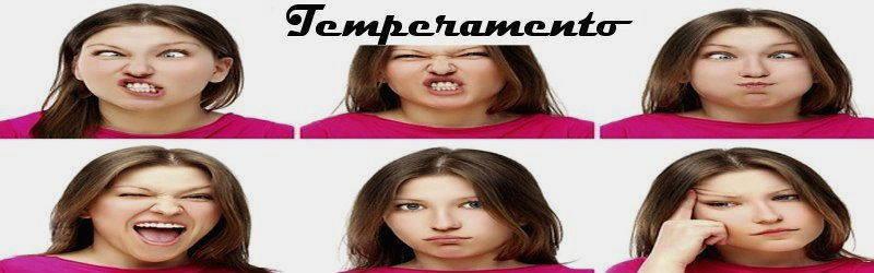 come funziona il temperamento