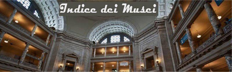 Indice musei