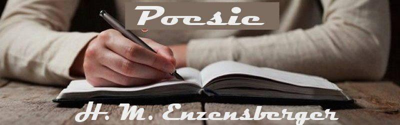 poesie e poeti italiani e stranieri poesia h m enzensberger