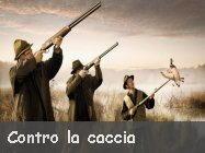 fermiamo la caccia per sempre