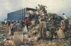 La società dei consumi ovvero la società della spazzatura