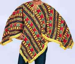 Un costume di carnevale improvvisato