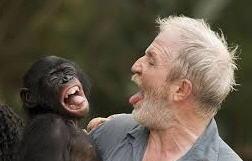 Imitazione uomo scimmia