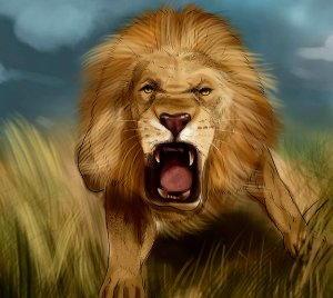 davanti ad un leone