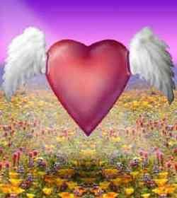 San Valentino poesie d'amore