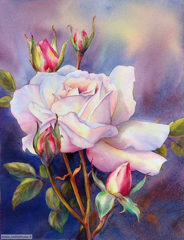vasi di fiori Marianne Broome 2