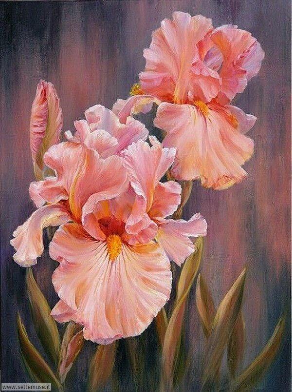vasi di fiori Marianne Broome