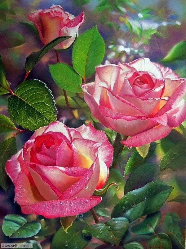 vasi di fiori Maureen Bainbridge