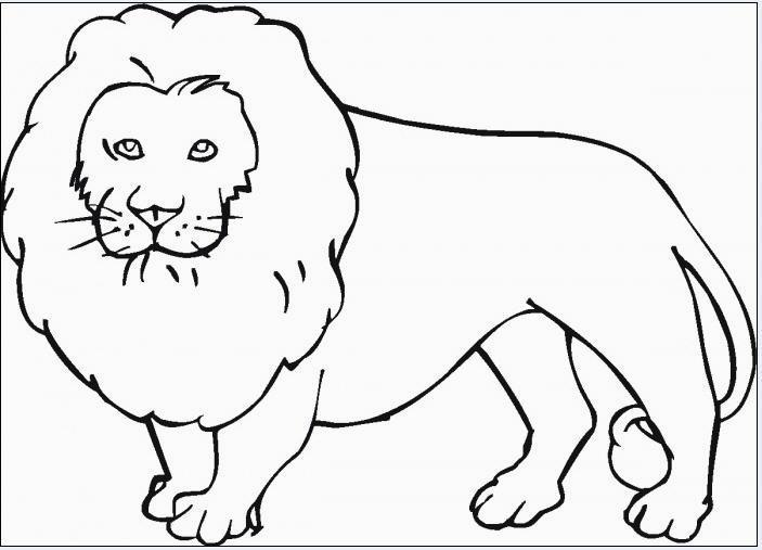 Disegni da colorare tema animali for Disegni da stampare e colorare di cani