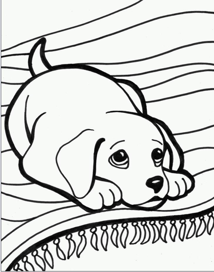disegni da colorare tema animali