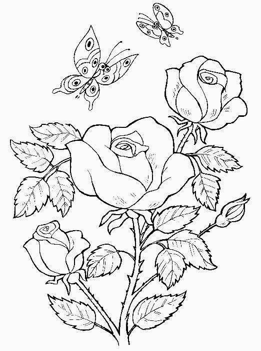 Disegni da colorare tema fiori for Fiori facili da disegnare