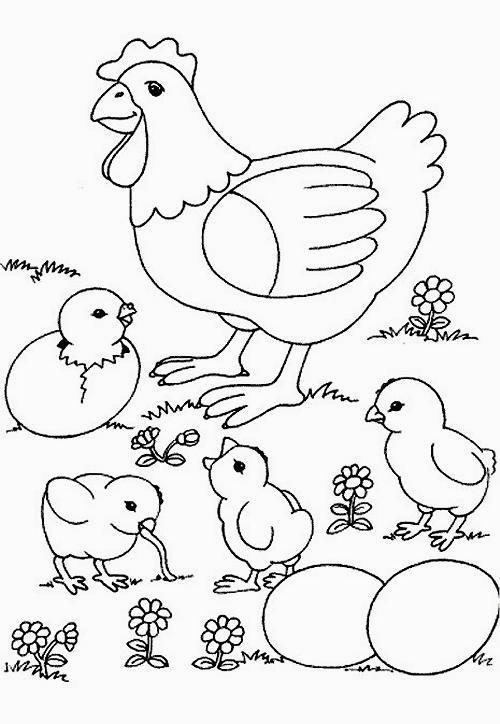 chicken coloring page - disegni da colorare tema galline e pulcini
