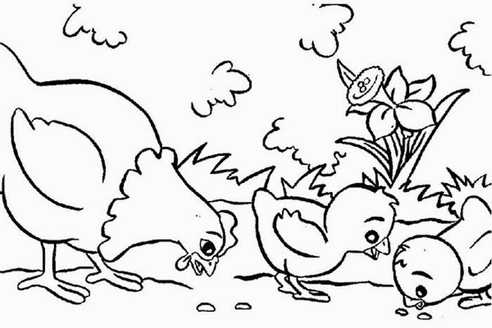 coloring pages animal classification activities - photo#32