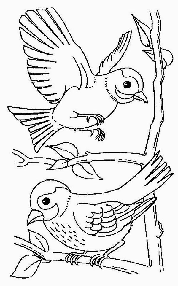 colorare/disegni_uccelli_001.jpg