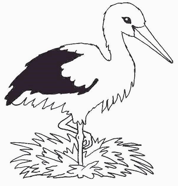 Disegni da colorare tema uccelli - Semplici disegni di uccelli ...
