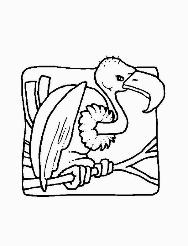 colorare/disegni_uccelli_006.jpg