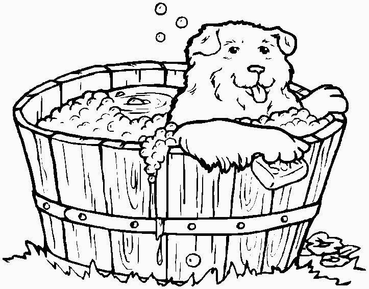 bagnetto del cane