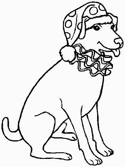 cane pagliaccio