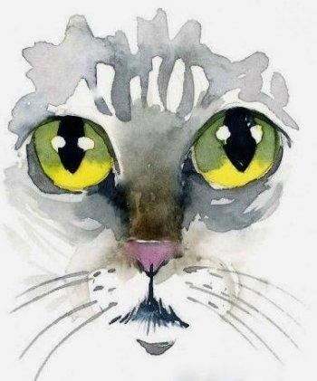 Gatto da disegnare