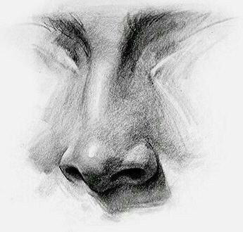 Come disegnare il naso