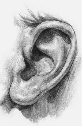 Come disegnare un orecchio