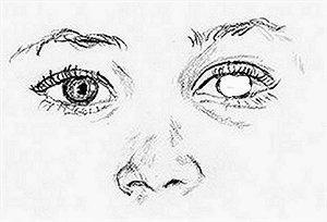 foto_disegno/disegno_05_occhi_naso.jpg