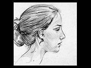 Pag. 6 Disegnare un profilo
