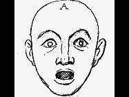 Pag. 10 Le espressioni del viso