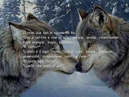 Vignetta due lupi