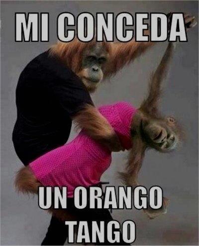 Orango tango