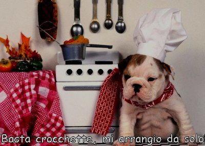 cane chef divertente