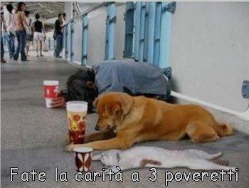 fate la carita a 3 poveri disoccupati