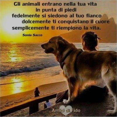 gli animali entrano nella tua vita