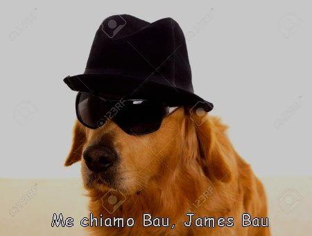 me chiamo bau james bau