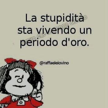 la stupidita