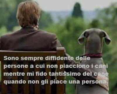 cani e persone