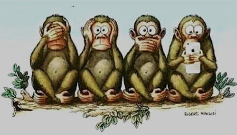 quattro scimmie